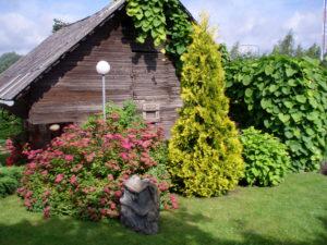 Rakkaudella rakennetut puutarhat Virossa