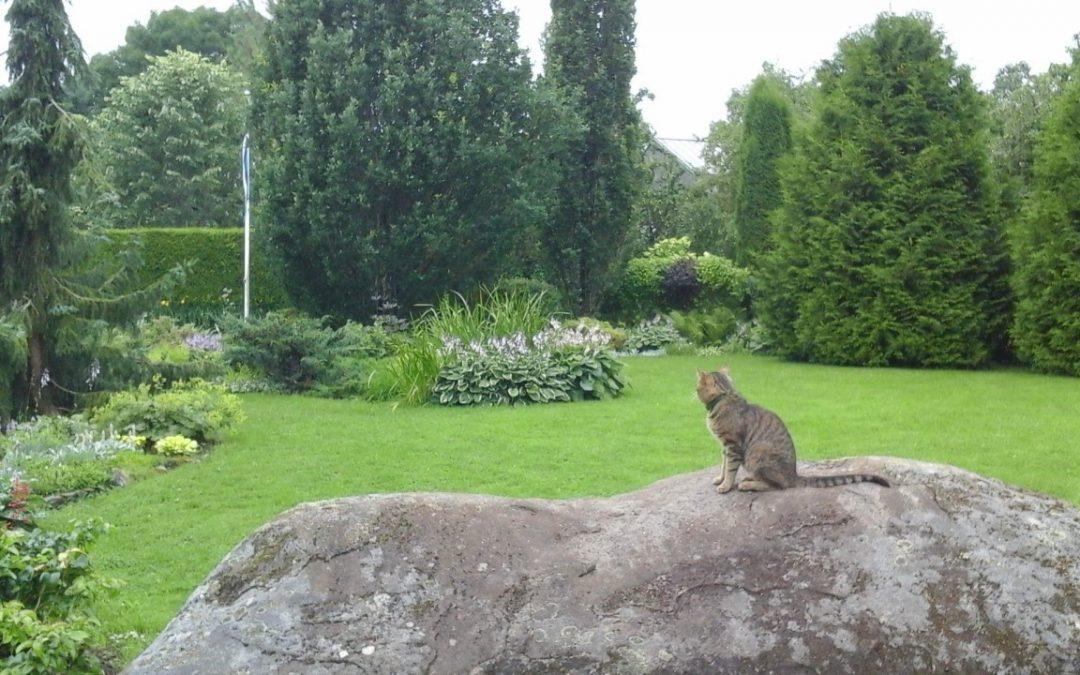 Puutarhojen kauneutta Keski-Virossa ja Tartossa